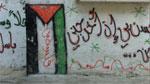 Layal, Age 12, Balata Refugee Camp, Palestine